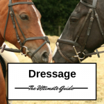 Dressage - The Ultimate Guide