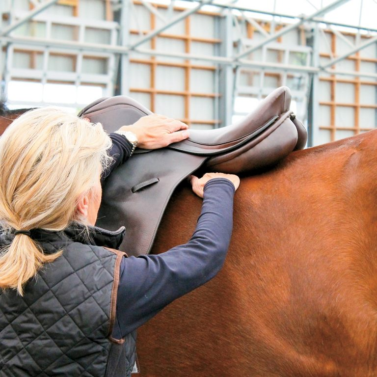 Choosing a Good Saddle